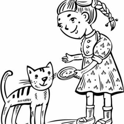 La alimentación de los gatos