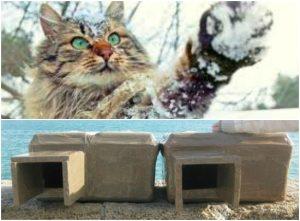 Refugios contra el frío para los gatos de la calle