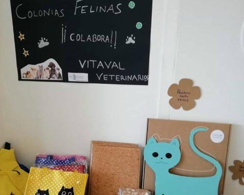 Mesa solidaria en VITAVAL