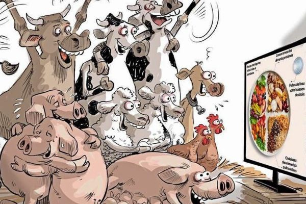 Canadá hace frente al lobby ganadero con la verdad: No a la leche, Sí a la proteína vegetal