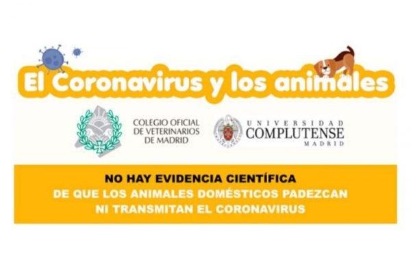 Coronavirus (COVID-19) y los animales de compañía. WSAVA nos tranquiliza.